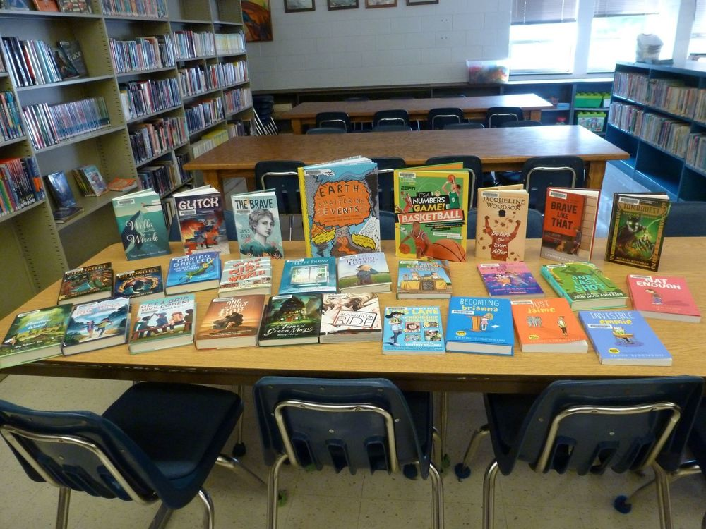 New Middle School books for the Library