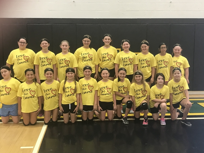 Elementary volleyball
